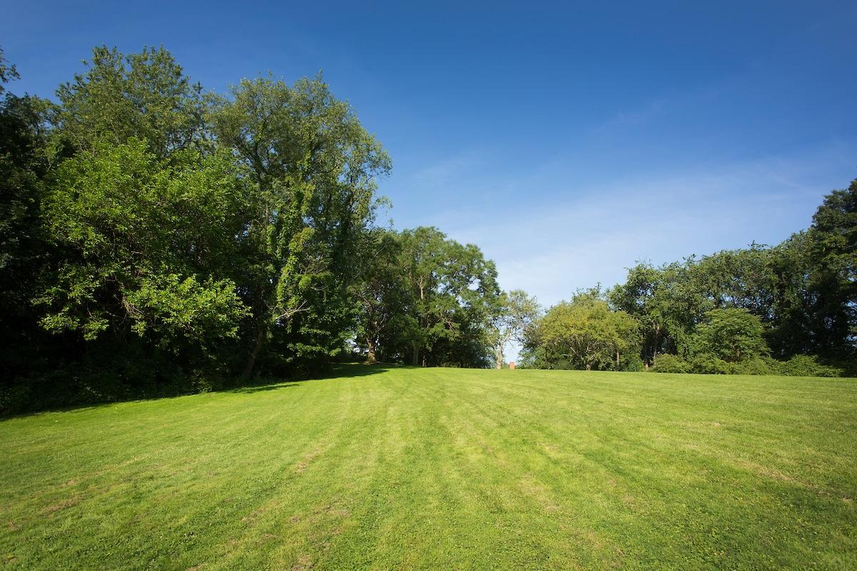 A green open field