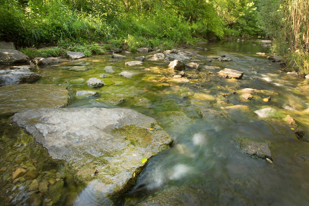An image of rocks in a stream
