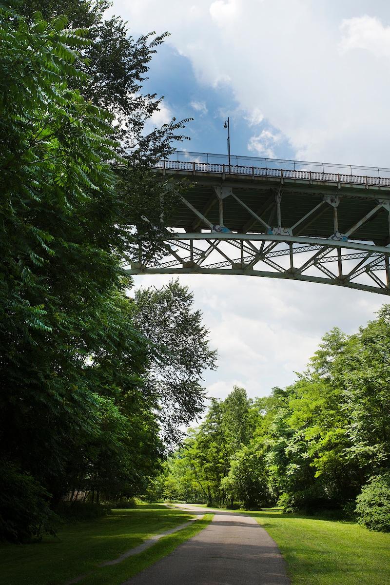 An image of a bridge above a trail.