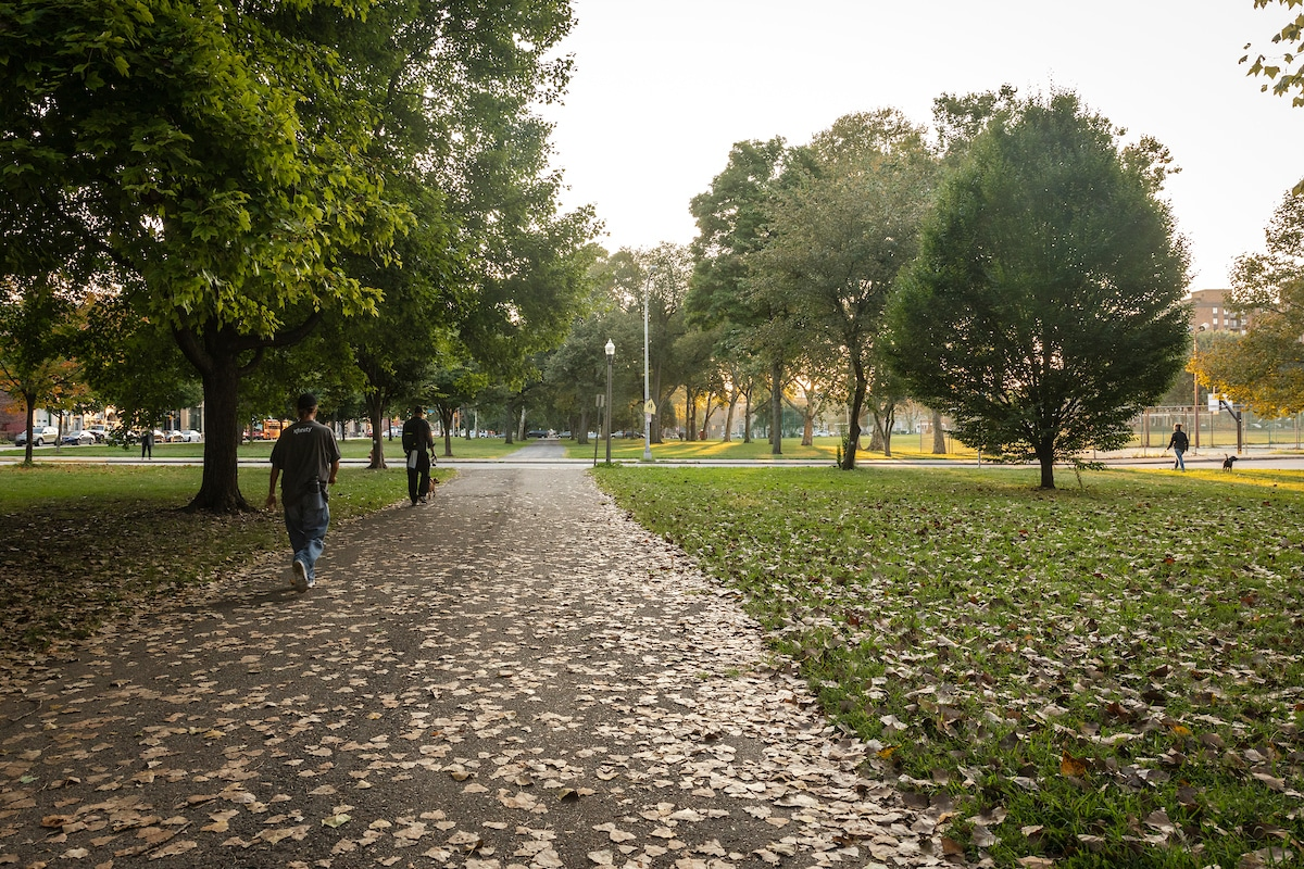 Trees and pathways in Allegheny Commons Park