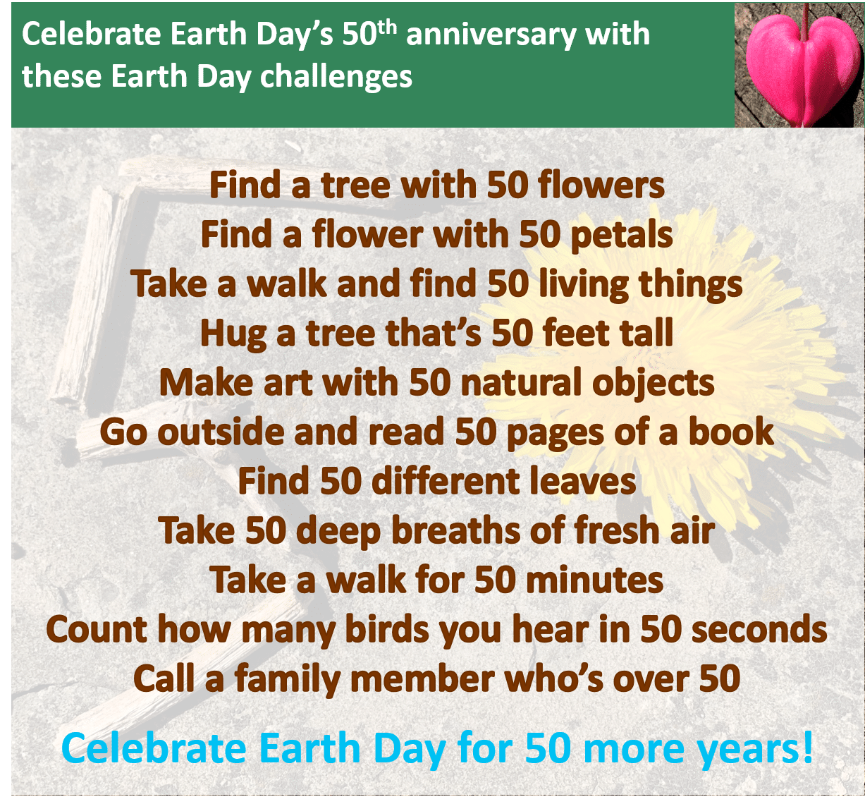 A graphic of Earth Day Challenges