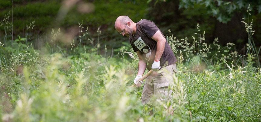 Volunteer working in a field