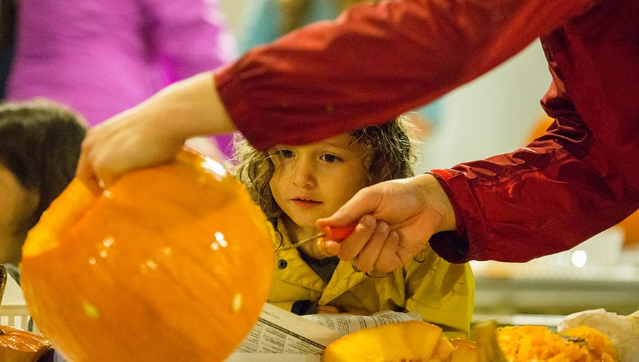 An image of a child watching a pumpkin being carved.