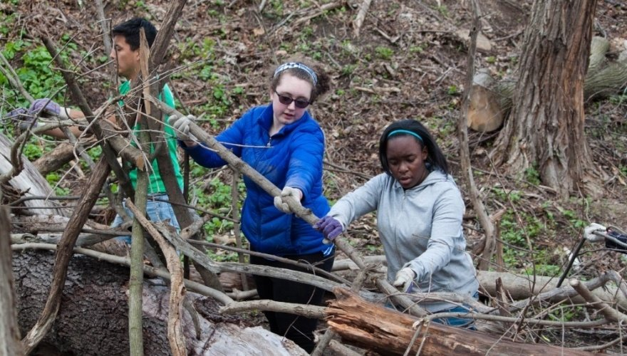 Volunteers moving a large stick in a park