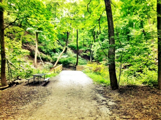 Trail, a picnic table, and trees in Frick Park
