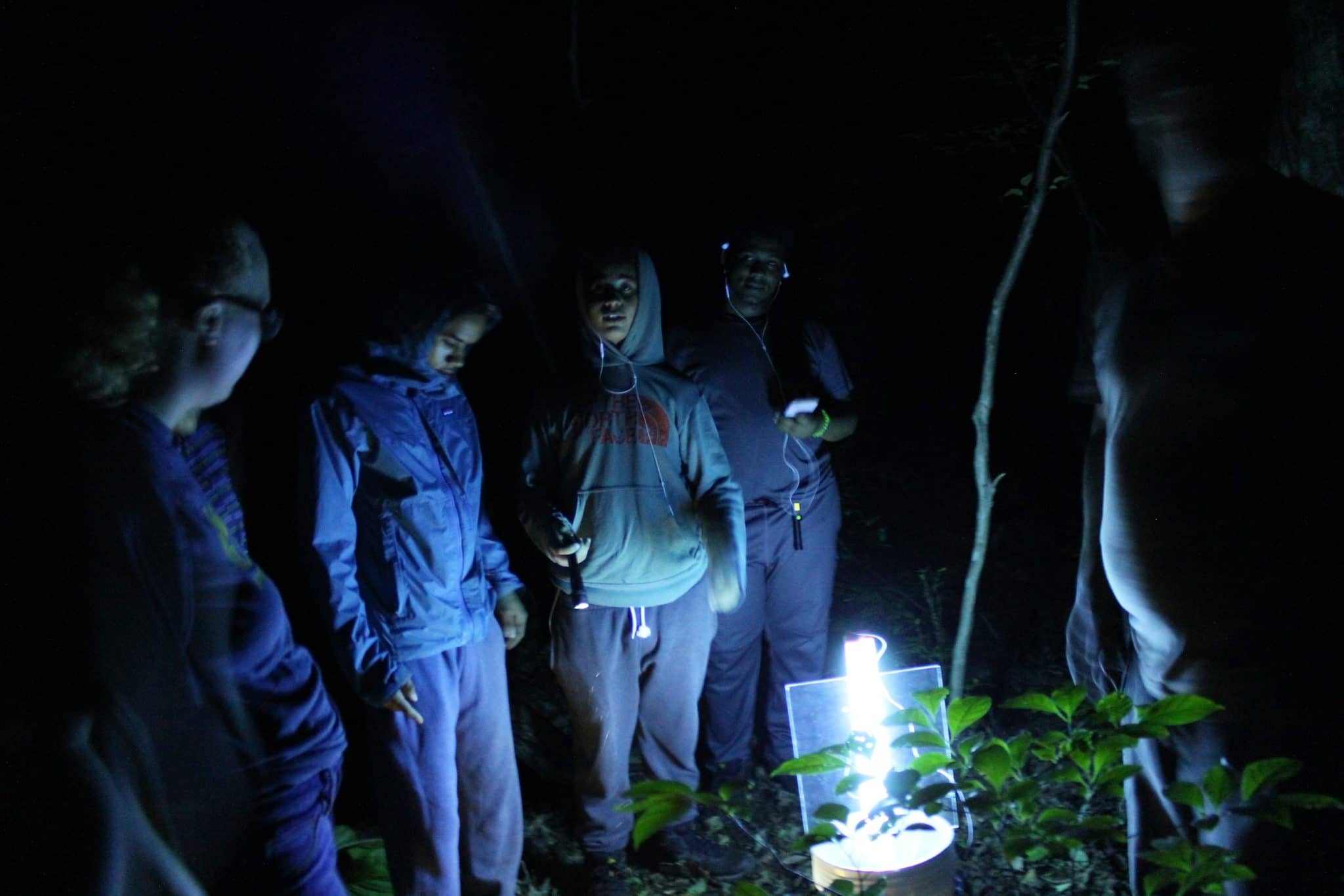 Group of people observing a light
