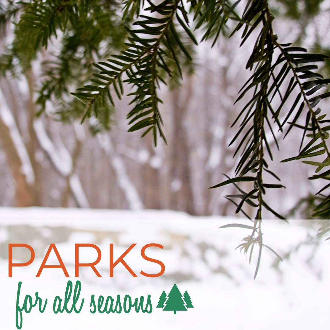 An evergreen tree with the text Parks for All Seasons