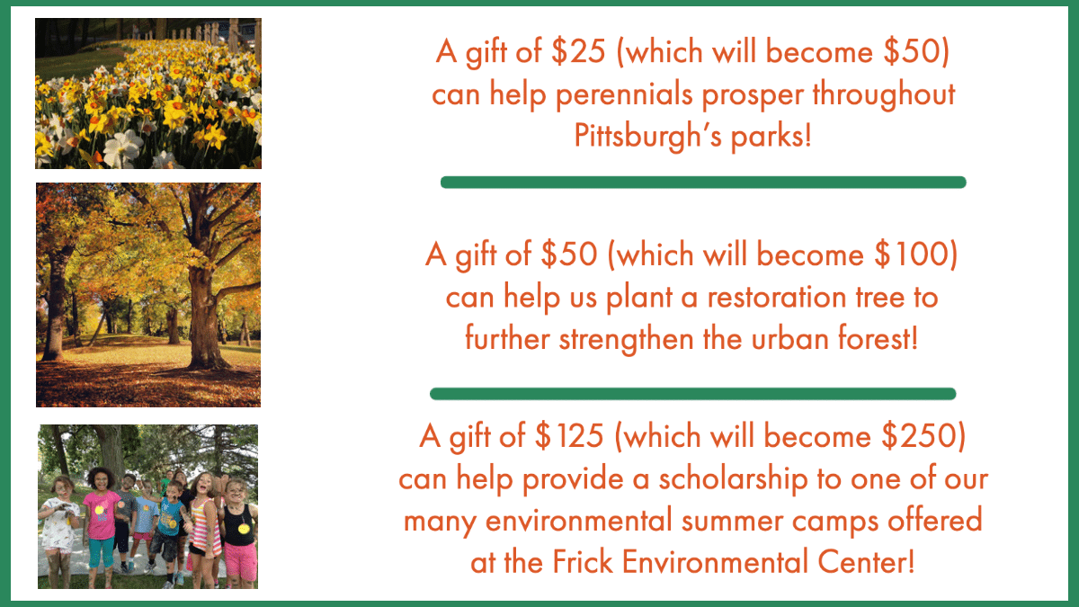 Image describing what gifts of different amounts can do for the parks