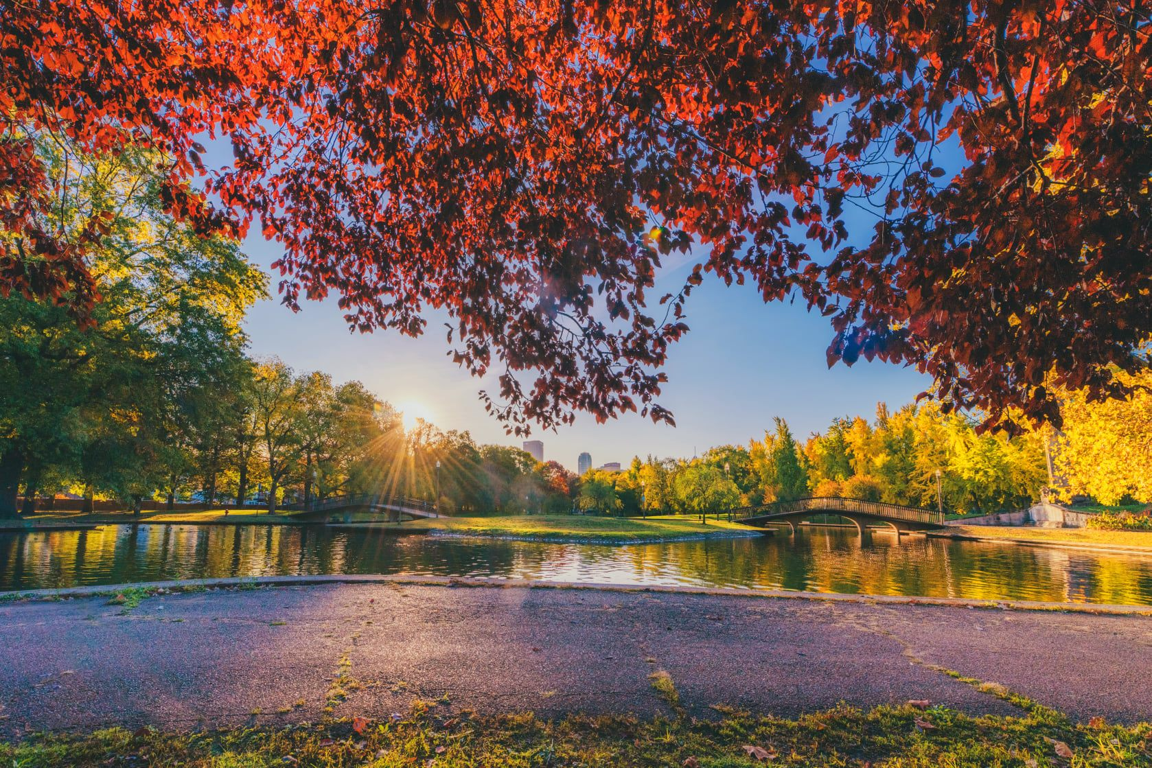 An image of a pond and trees at Allegheny Commons.