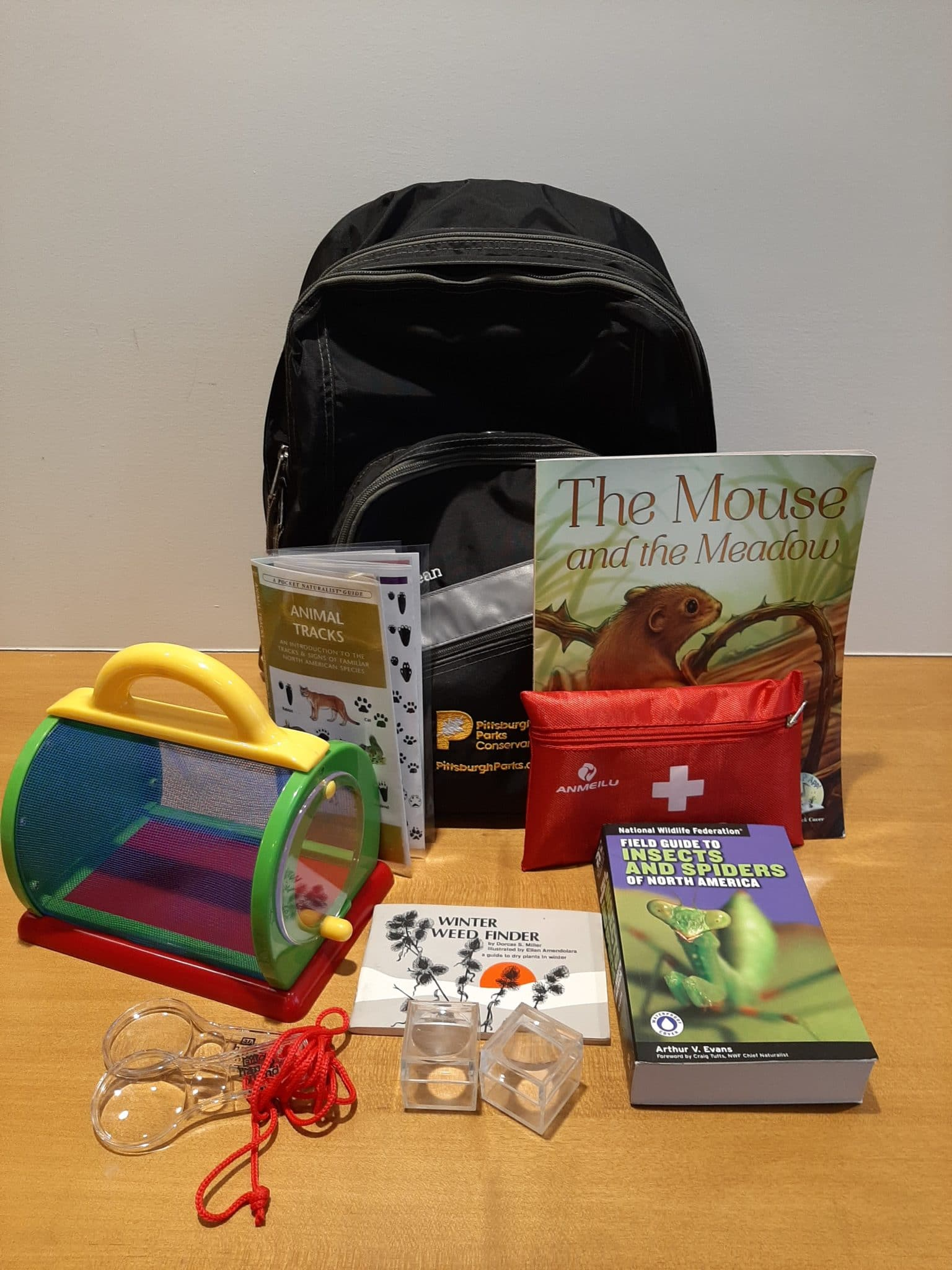 Backpack with tools and nature guides