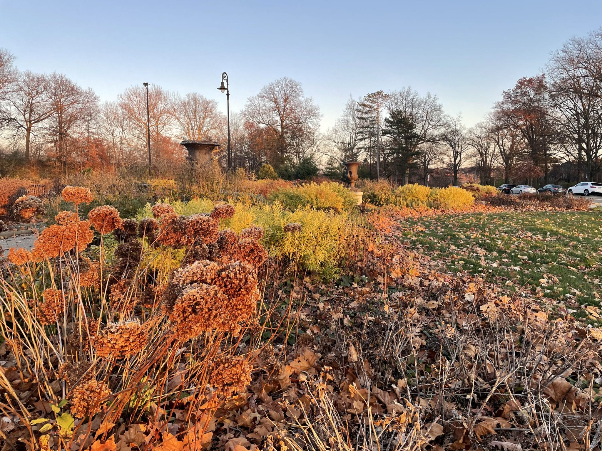 Highland Park Entry Garden with fall plants