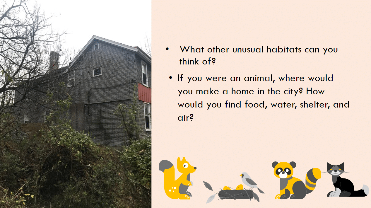 Unusual habitats graphic with old home