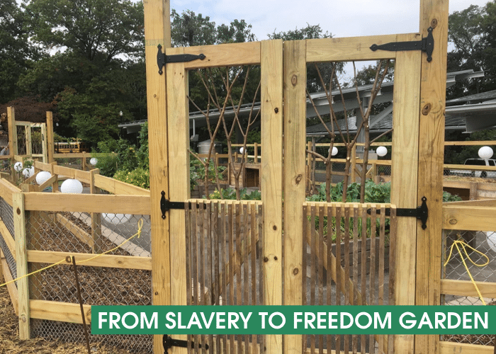 From Slavery to Freedom Garden Banner