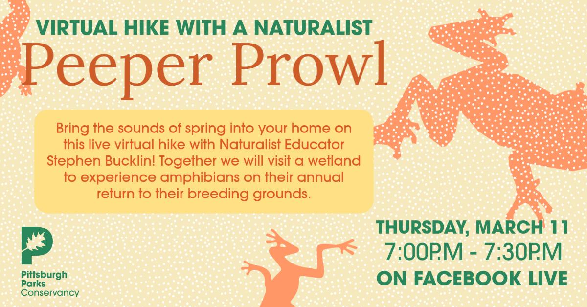 Peeper Prowl information