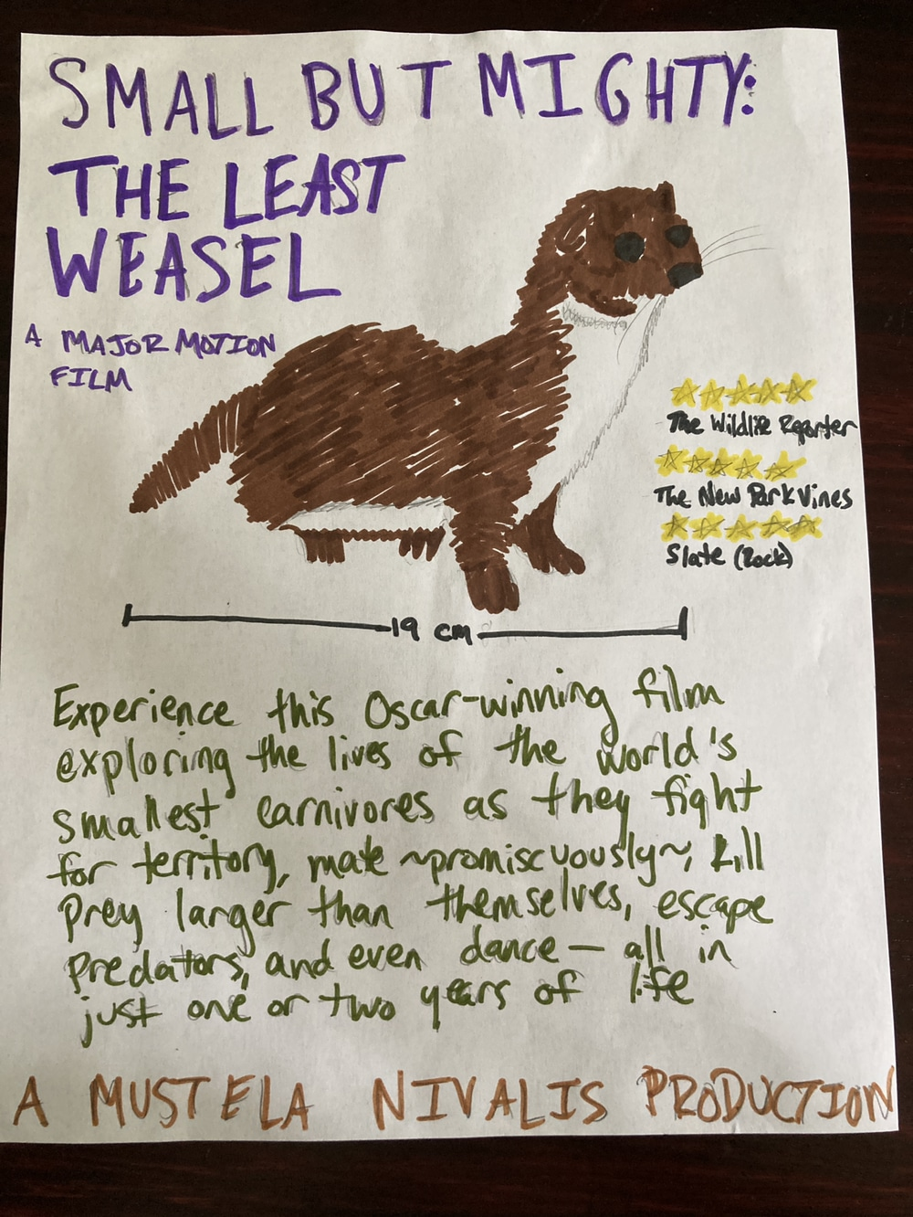 Least Weasel Movie Poster drawing