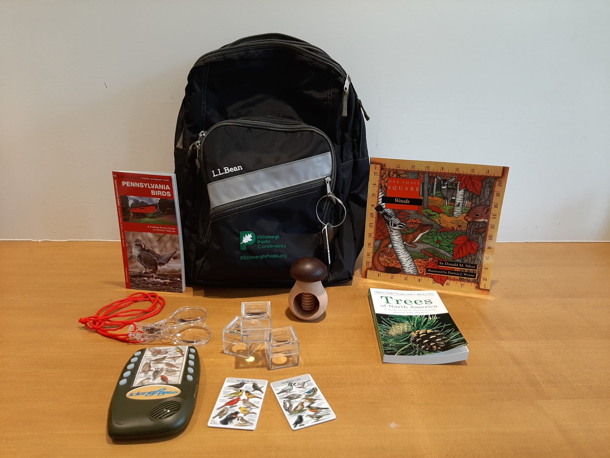 A backpack with forest materials and guides