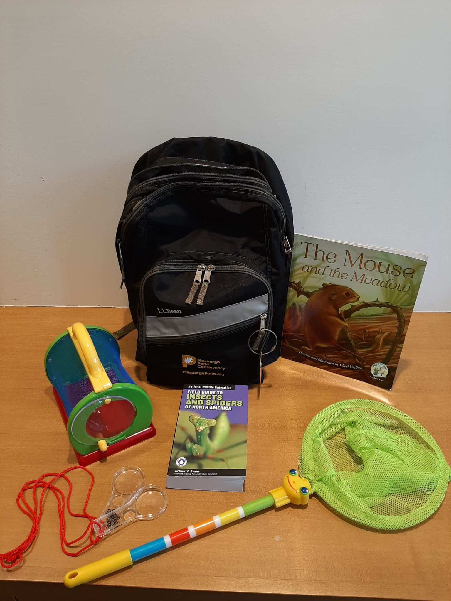 A backpack with a butterfly net, magnifying glasses, and guides