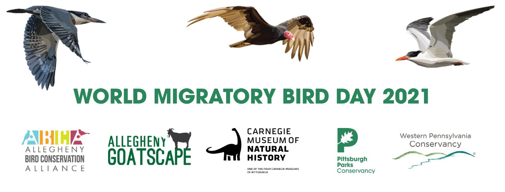 Wild Migratory Bird Day banner