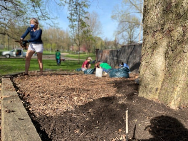 Several people mulching an area surrounding a tree