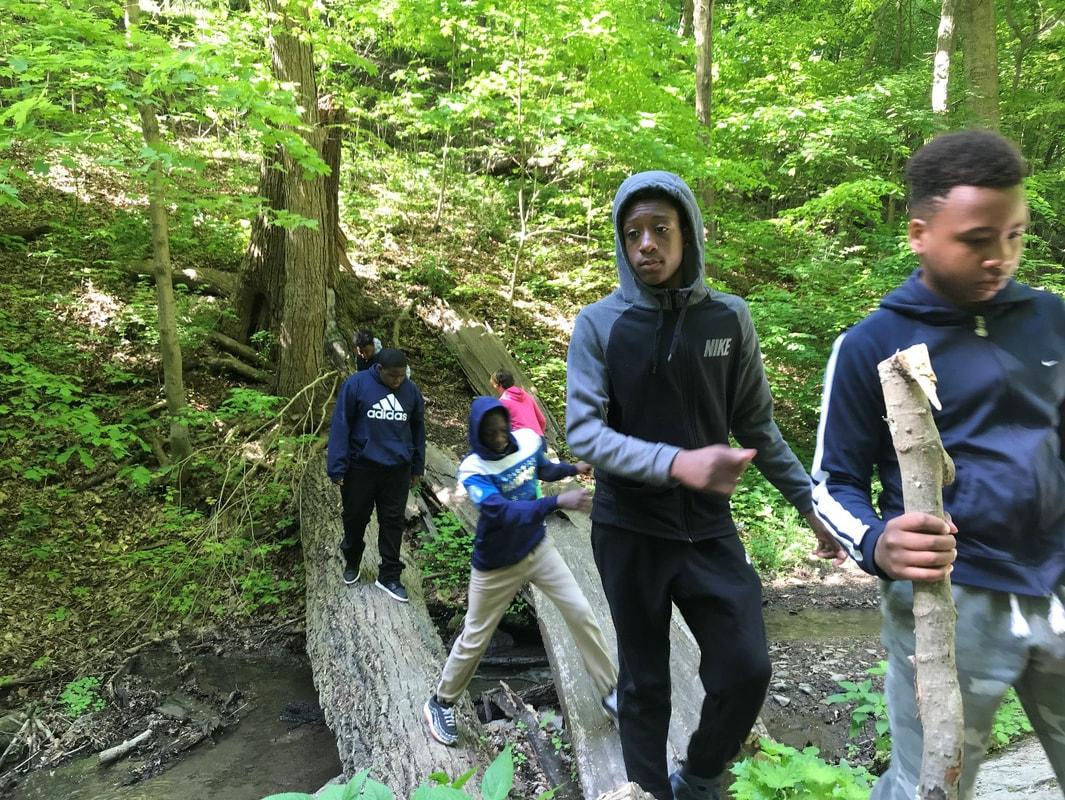 Students crossing a tree bridge over a stream