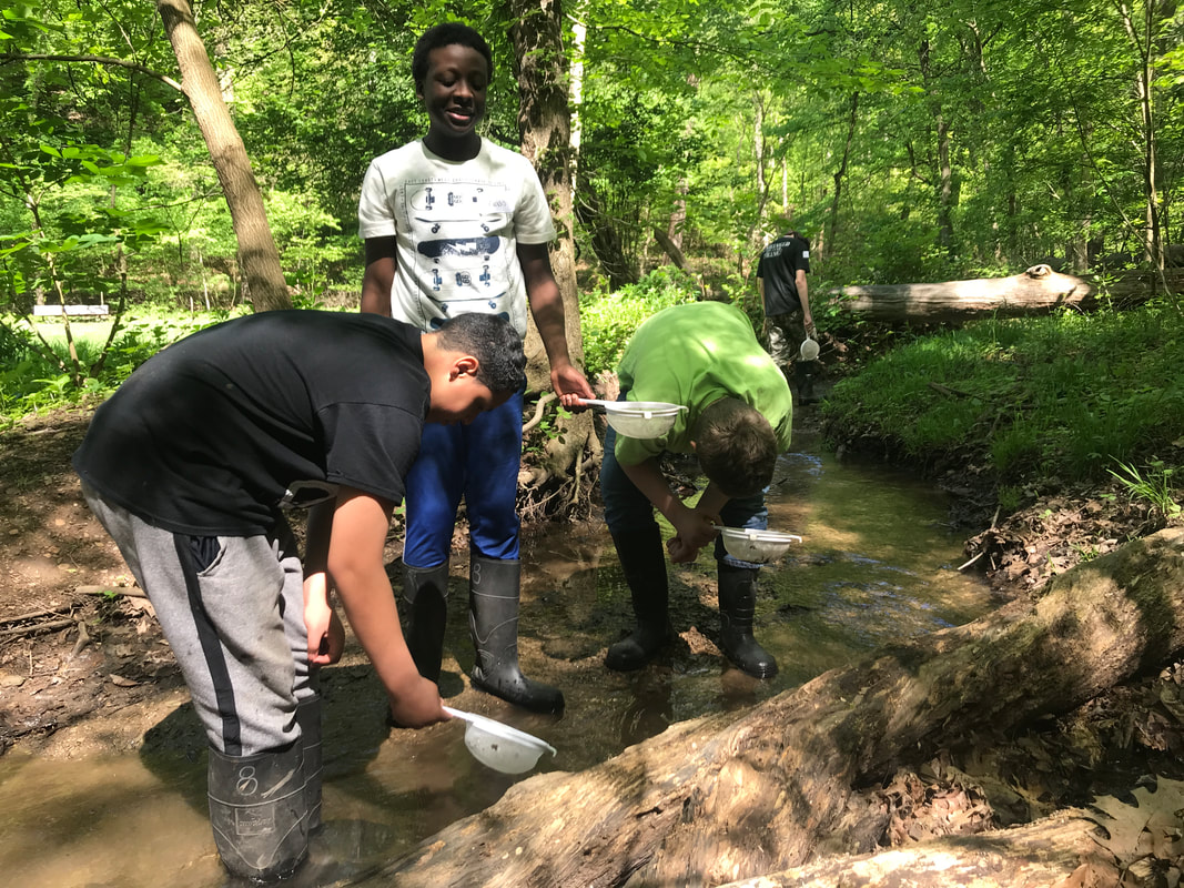 Children searching for macroinvertebrates in a stream