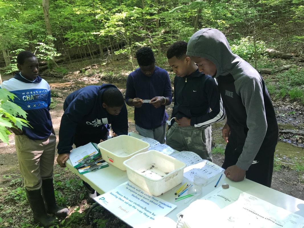 Students looking at stream macroinvertebrates
