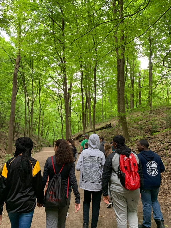 Students walking through the forest