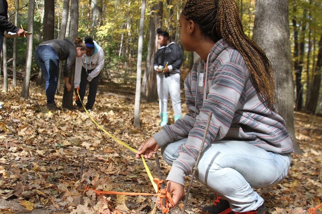 Children measuring forest plots for tree identification