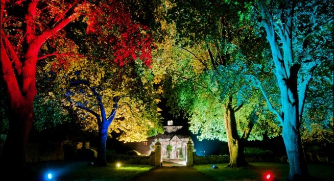 Trees at night, lit with colorful lighting alongside a pathway with a stone gate and building in the distance