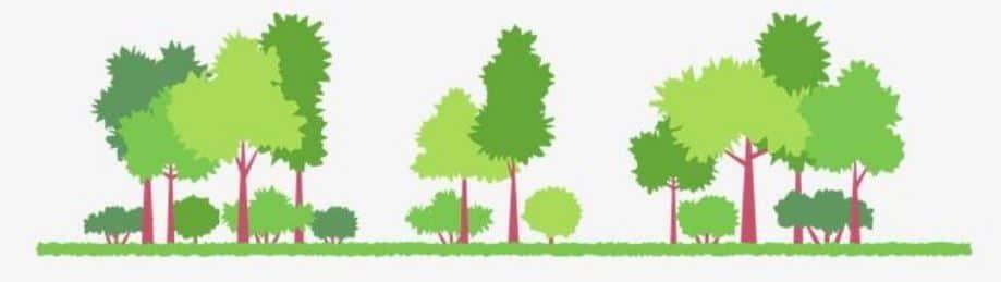 cartoon tree image