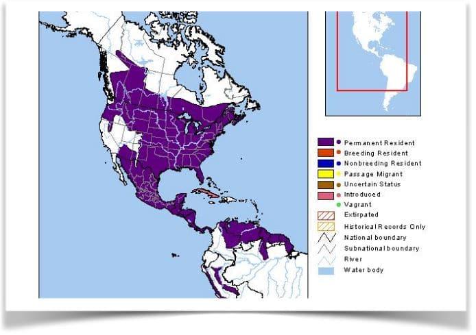 Map of deer migration