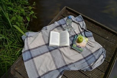 Books, water bottle, and apple on a picnic blanket