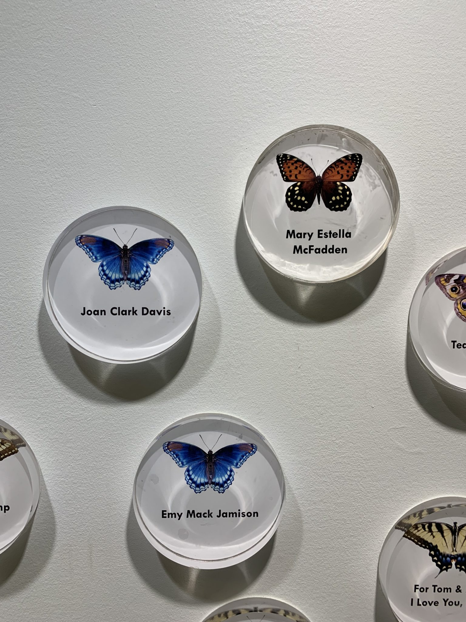 Butterfly plaques at the Frick Environmental Center.