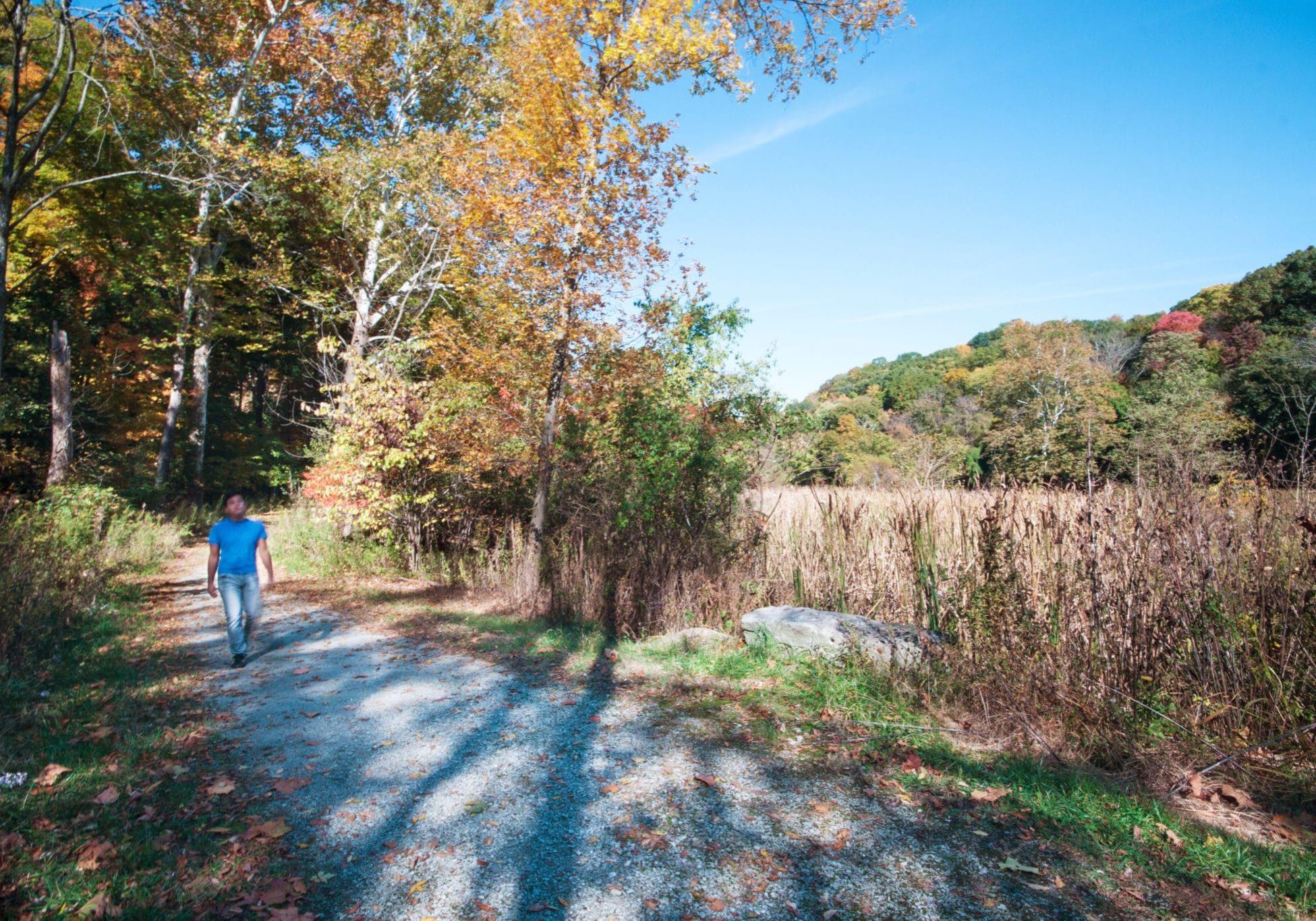 A person walking on a trail through autumn leaves
